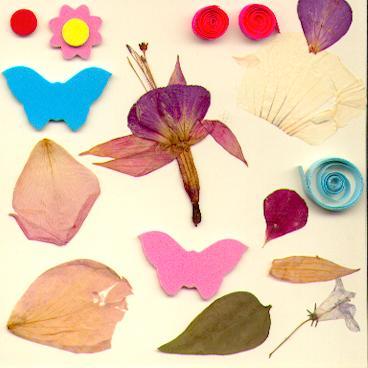 Carte aux papillons et aux fleurs et aux grandes tornades gigantesques